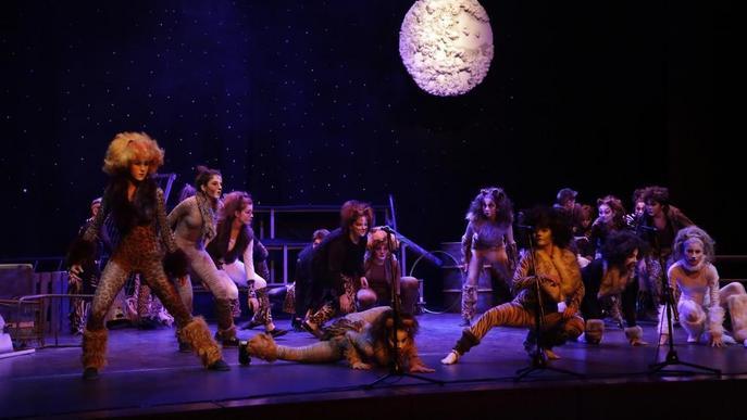Obra de teatre solidària en benefici d'Aspid