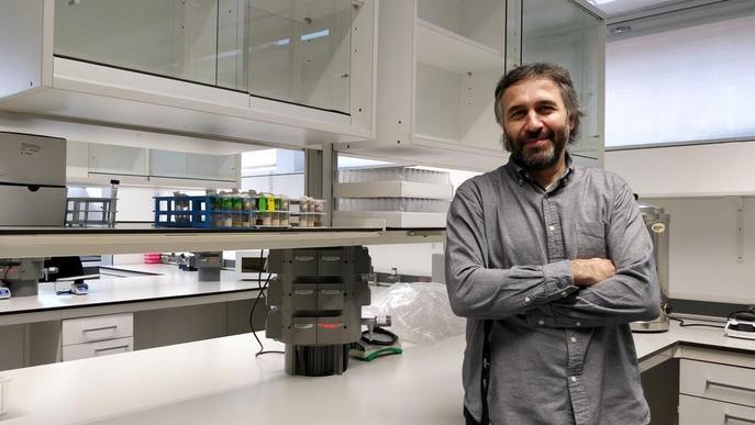 L'IRBLleida lidera un estudi pioner amb mosques que aporta llum sobre la metàstasi