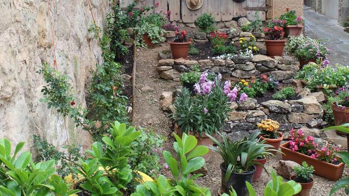 Més de 280 inscrits a les Garrigues en Flor d'aquest any