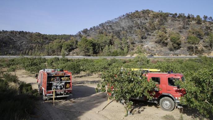 Una burilla podria haver causat l'incendi de Maials, encara que descarten intencionalitat