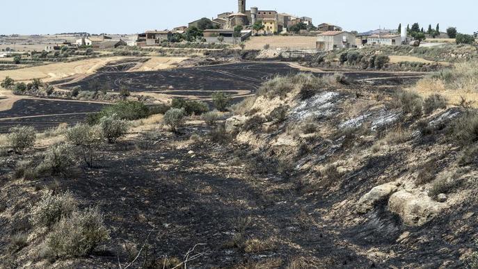 Màxima alerta per l'onada de calor i el risc d'incendis, amb 60 hectàrees calcinades ahir
