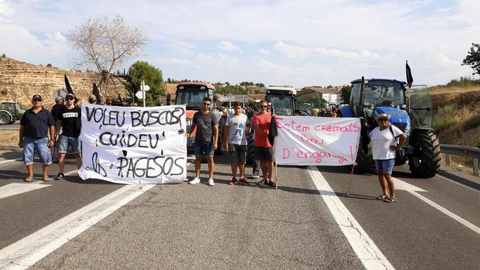 Agricultura paga 492.000 euros en ajuts als afectats per l'incendi de la Ribera d'Ebre, les Garrigues i el Segrià