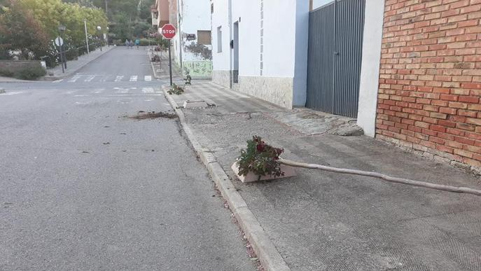Vandalisme contra arbres, mobiliari urbà i cotxes a les festes de Sucs