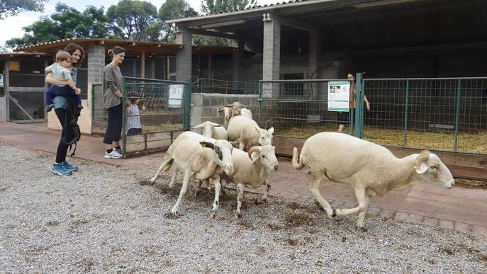 Diversió familiar a La Manreana Parc