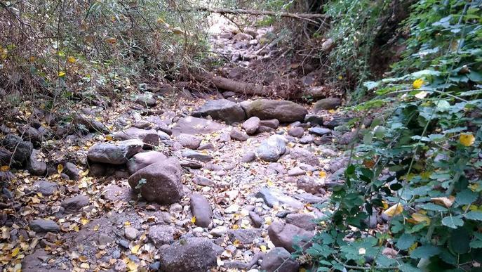 Denuncien que un tram del riu del Cantó està sec