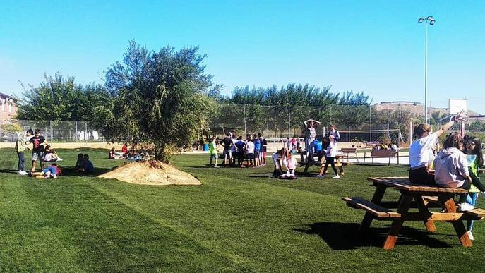 Alpicat reutilitza la gespa retirada del camp de futbol