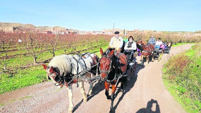 El paisatge tardoral d'Aitona atreu uns set-cents visitants