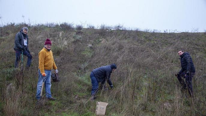 Planten llavors per reforestar l'entorn del Segarra-Garrigues