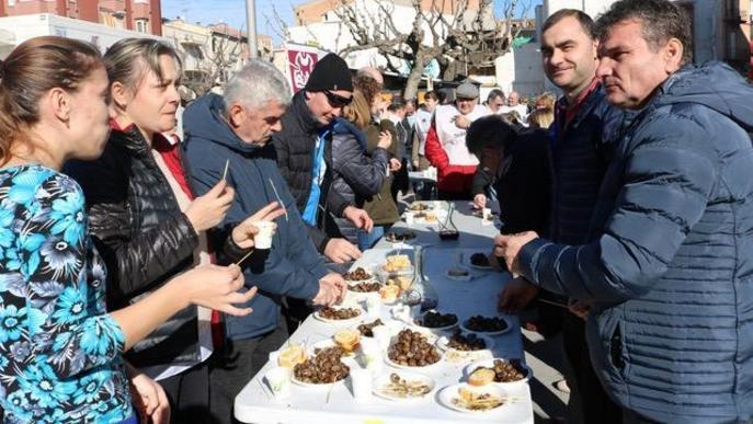 Experiències oleoturístiques a les Garrigues i el Segrià