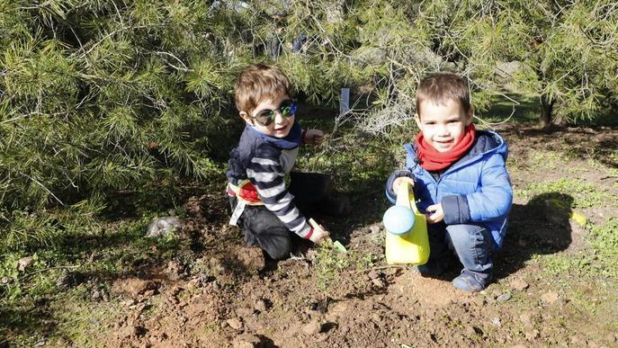 Famílies lleidatanes fan una plantada d'arbres al Turó de Gardeny
