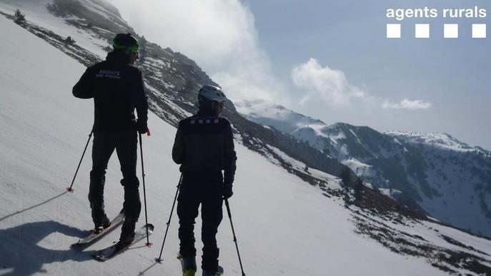 Vigilància dels Agents Rurals en zones d'alta muntanya