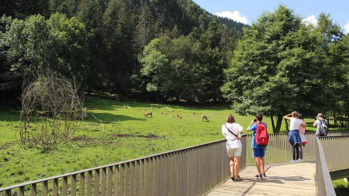 El ràfting obre la temporada amb reserves que garanteixen l'activitat tot l'estiu