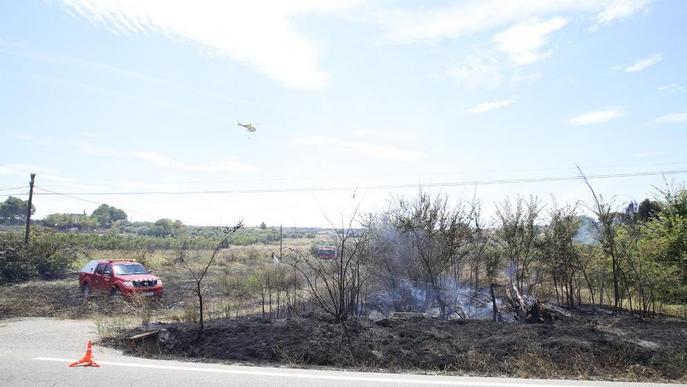 Un foc calcina 1,9 hectàrees de vegetació agrícola a Castelldans