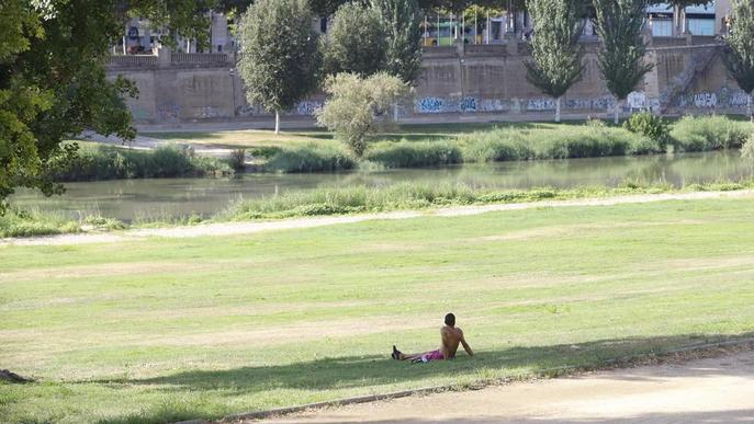 Persona a la gespa de la vora del riu Segre. Arxiu