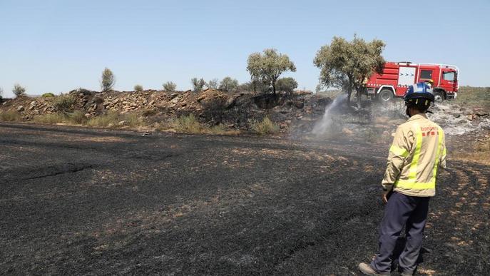 Incendi de vegetació agrícola a la Sentiu de Sió