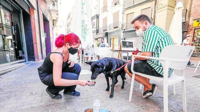 Els gossos també poden anar de menú