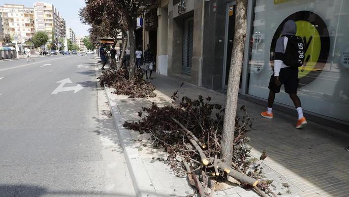 Més de 60 avisos i danys en una desena de cotxes per la tempesta