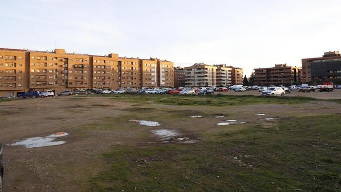 Arbres al gran solar d'Alcalde Pujol de Lleida, que deixarà de ser un aparcament