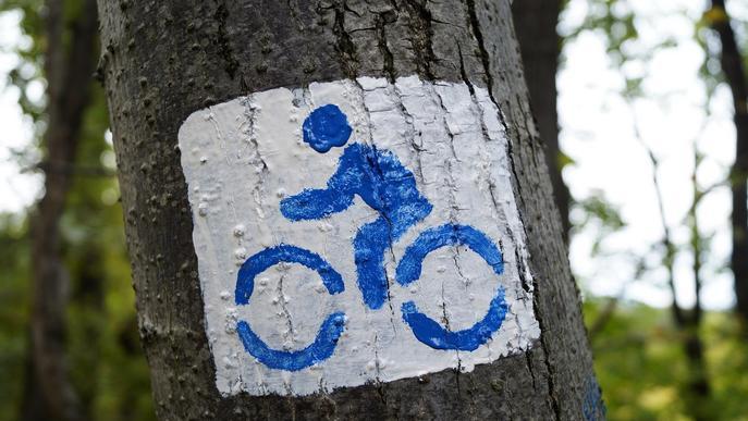 Llum verda a l'adhesió de la Paeria a l'estratègia catalana de la bicicleta 2025