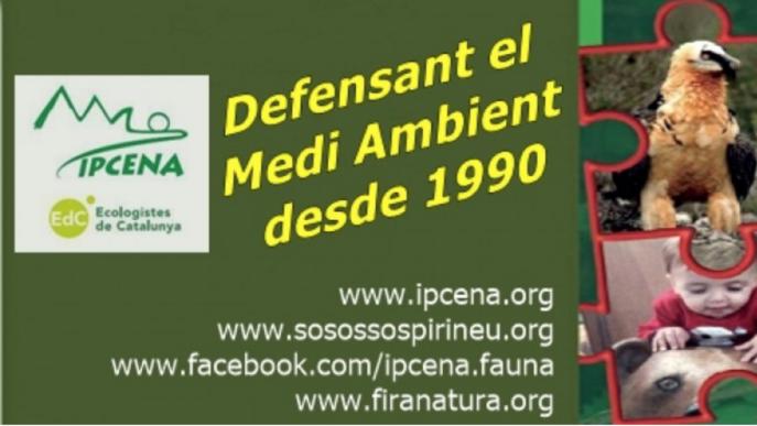 Ipcena denuncia davant de Territori les obres de l'ACA al riu Farfanya per reparar els danys del temporal Gloria