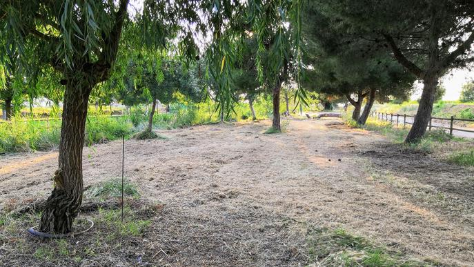Parc Reguer Tornabous