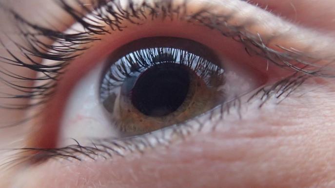 Com podem preveure el despreniment de retina?