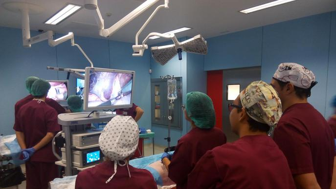 L'Hospital Arnau organitza un curs per abordar el tractament del càncer de pròstata
