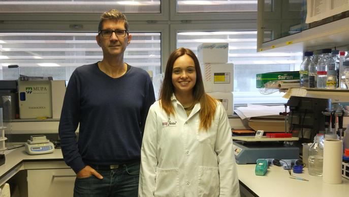 Descobreixen una relació genètica entre els canvis en la funció cardiovascular i l'Alzheimer