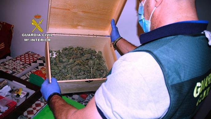 Desarticulats dos grups criminals de tràfic de drogues a diversos municipis de Lleida
