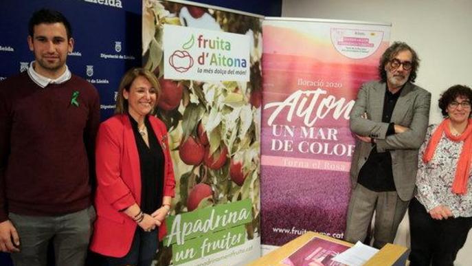 Aitona permetrà apadrinar presseguers i collir la fruita que produeixin o rebre-la a casa