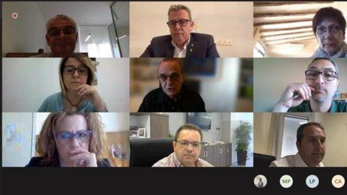 Captura de pantalla d'un moment de la reunió telemàtica entre la Diputació de Lleida i alcaldes de municipis on es desenvolupa la campanya de la fruita