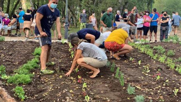 Pla de detall de gent plantant al jardí comestible de Senterada l'11 d'agost del 2020