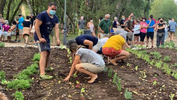 Pla general del jardí comestible de Senterada, al Pallars Jussà. Imatge de l'11 d'agost del 2020