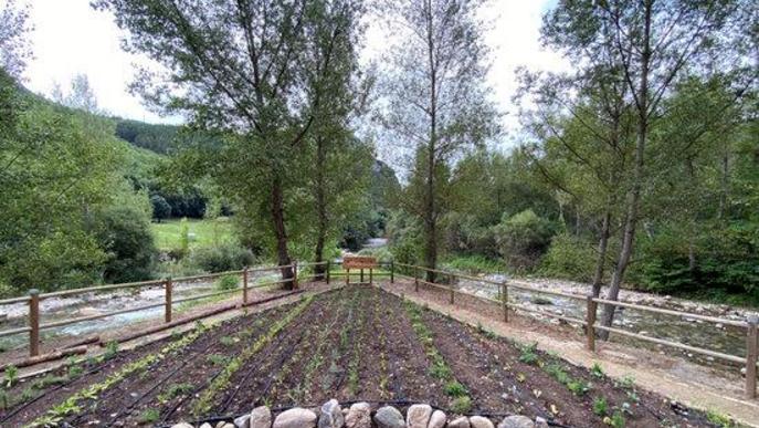 Pla general del jardí comestible de Senterada. Imatge de l'11 d'agost del 2020