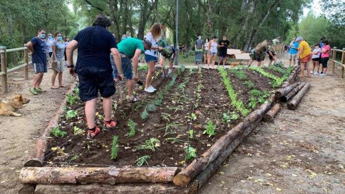 Veïns de Senterada, al Pallars Jussà, plantant al jardí comestible l'11 d'agost del 2020