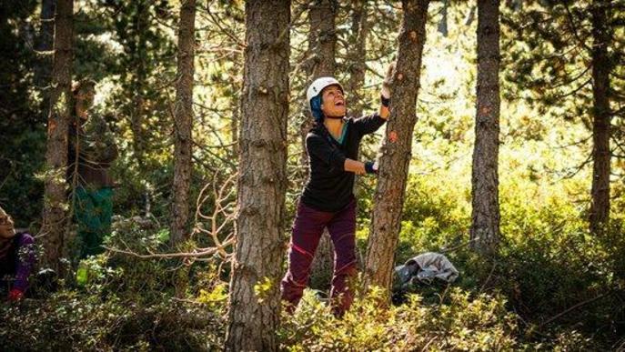 Pla general d'una noia treballant al bosc l'estiu del 2020