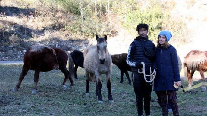 Pla general de la presidenta de la Fundació Miranda, Rosa Galindo, i un dels voluntaris de l'entitat en una pastura de Coll de Nargó (Alt Urgell) amb els cavalls de fons