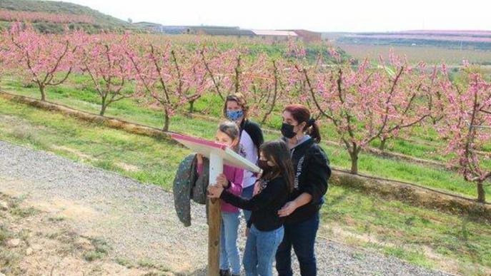 El Fruiturisme d'Aitona finalitza destacant el ressò mediàtic internacional d'aquesta campanya