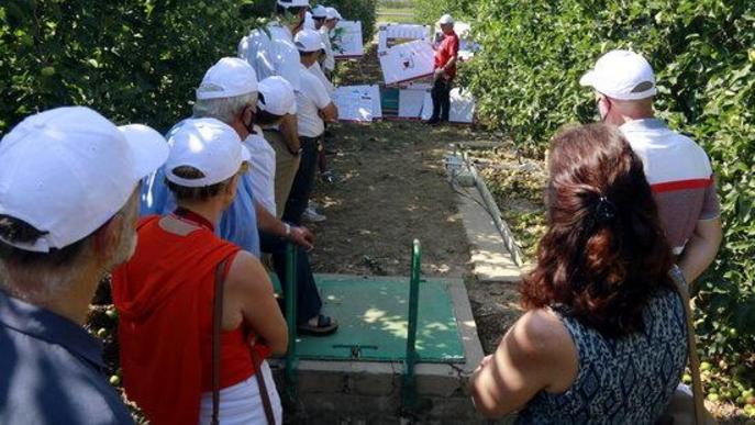 L'IRTA alerta dels episodis creixents de sequera que afectaran els cultius a mitjà termini