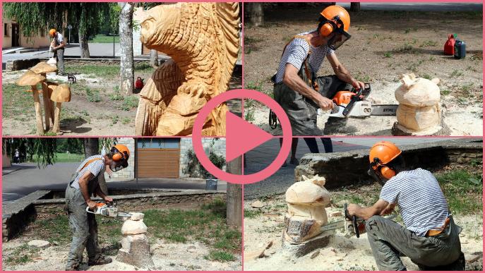 ⏯️ Esterri d'Àneu dissenya un circuit de 25 escultures de fusta de flora i fauna del Pirineu