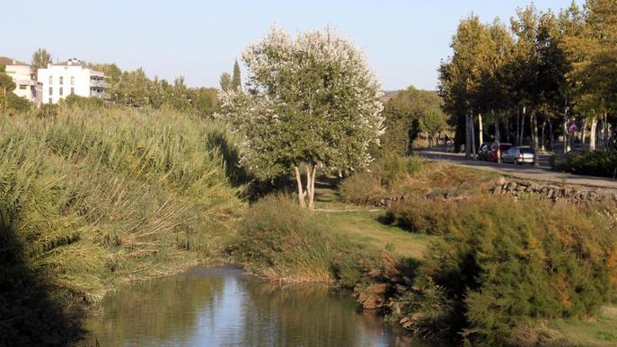 Tàrrega aprova un projecte de recuperació dels espais verds del riu Ondara