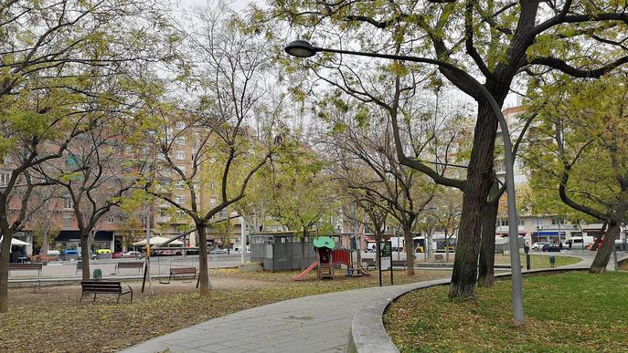 La Paeria plantarà 1.433 arbres i un miler d'arbustos aquest hivern a Lleida