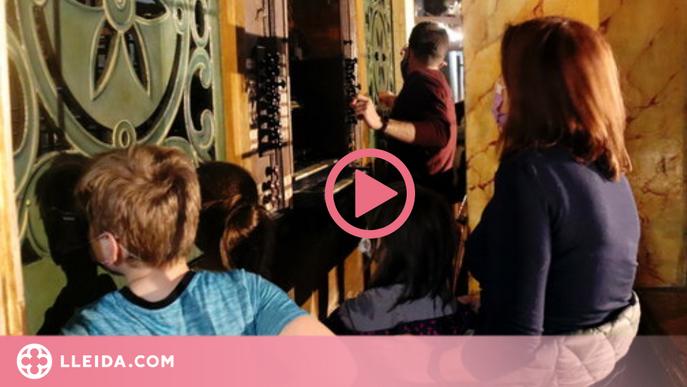 Infants coneixen les entranyes de l'orgue de la Catedral del Solsona