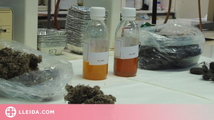 Cosmètics i fertilitzants a partir del pèl sobrant de l'adob de pells