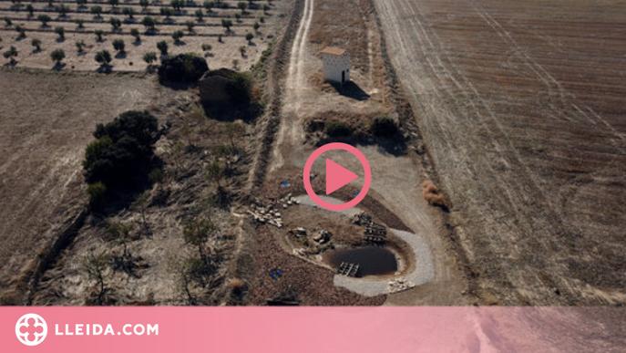 ⏯️ El Segarra-Garrigues aposta per consolidar el regadiu i mantenir la biodiversitat de l'entorn