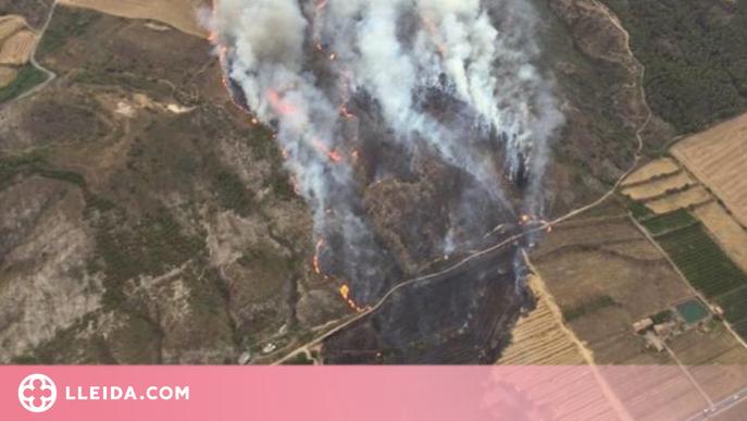 Bombers dona per controlat l'incendi d'Alfarràs