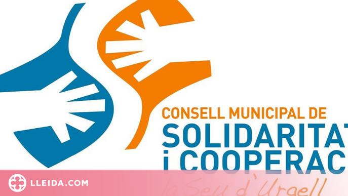 La Seu d'Urgell atorga 26.000 euros a projectes solidaris