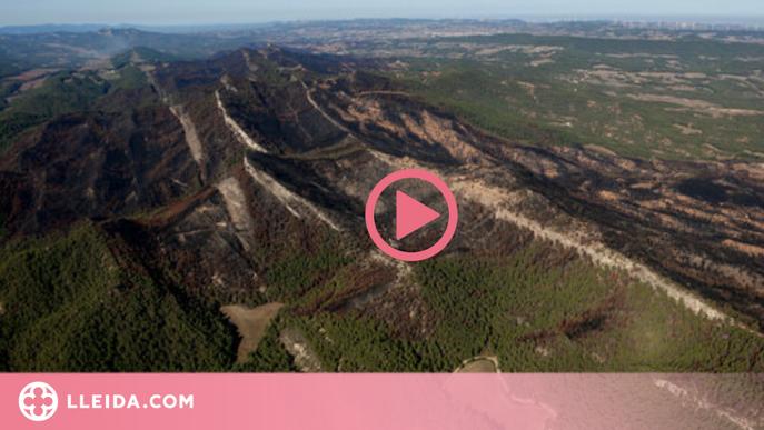 ⏯️ Catalunya registra 539 incendis amb 3.010 hectàrees cremades durant l'estiu