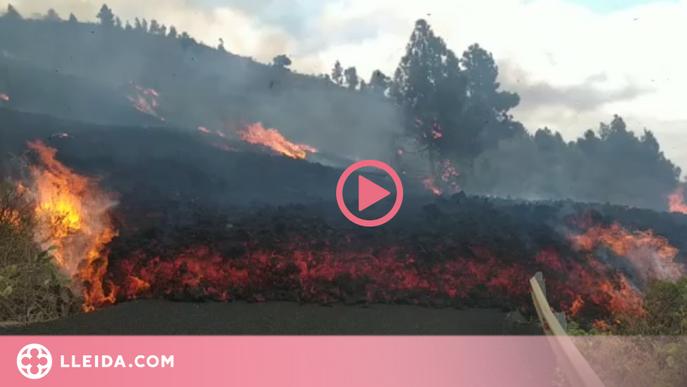 ⏯️ Evacuació massiva per l'erupció del volcà Cumbre Vieja a l'illa canària La Palma