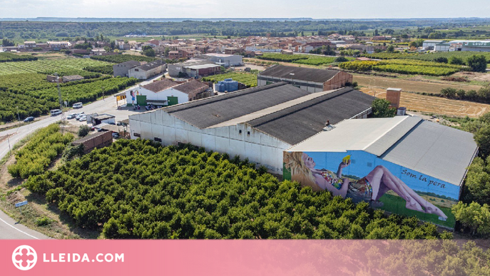 La DOP Pera de Lleida es reivindica amb un gran mural a Torrelameu